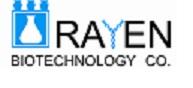 راین از مشتریانی است که از نرم افزارهای تولید شده توسط شرکت کارا افزار ایده آل استفاده می کنند